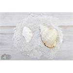 Oyster White - vopsea Azure Owl Milk Paint