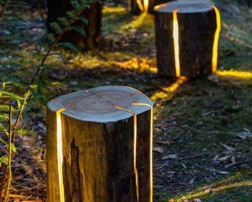 Proiecte DIY din lemn